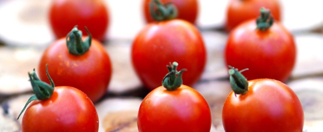 tomatoes-5592379_1920