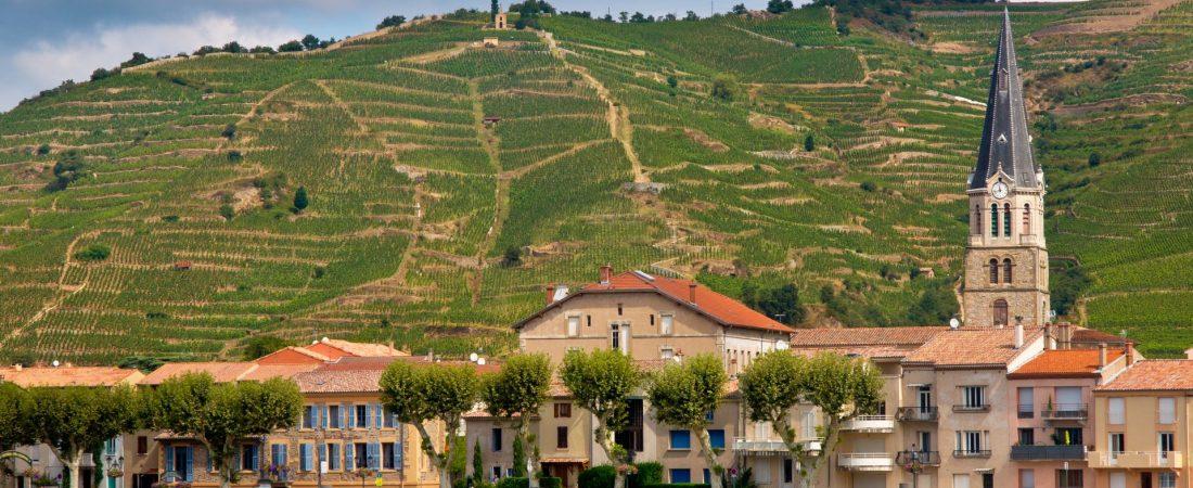 vineyards-in-the-cote-du-rhone-france-PUGBAVD